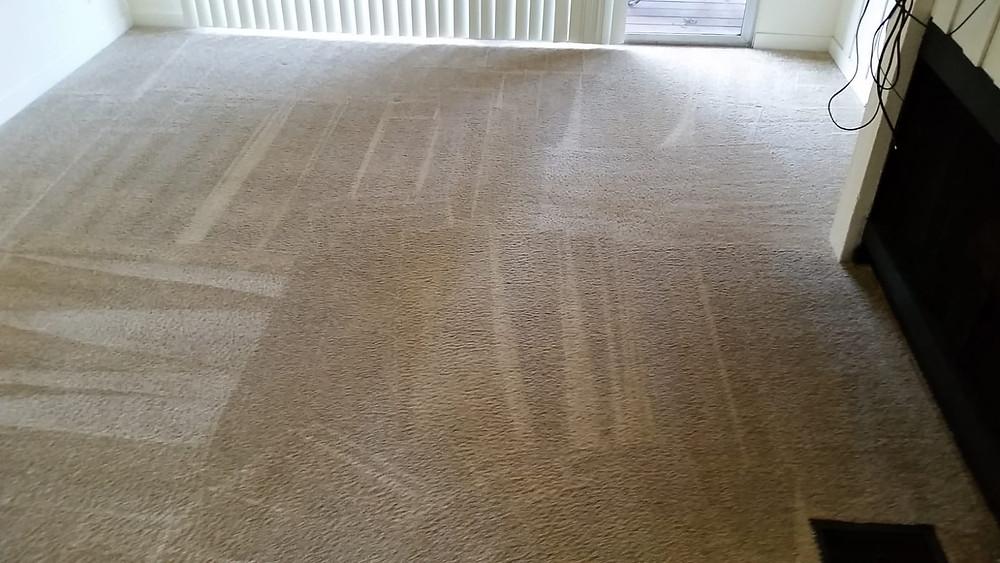 5 stars carpet cleaning in laguna hills