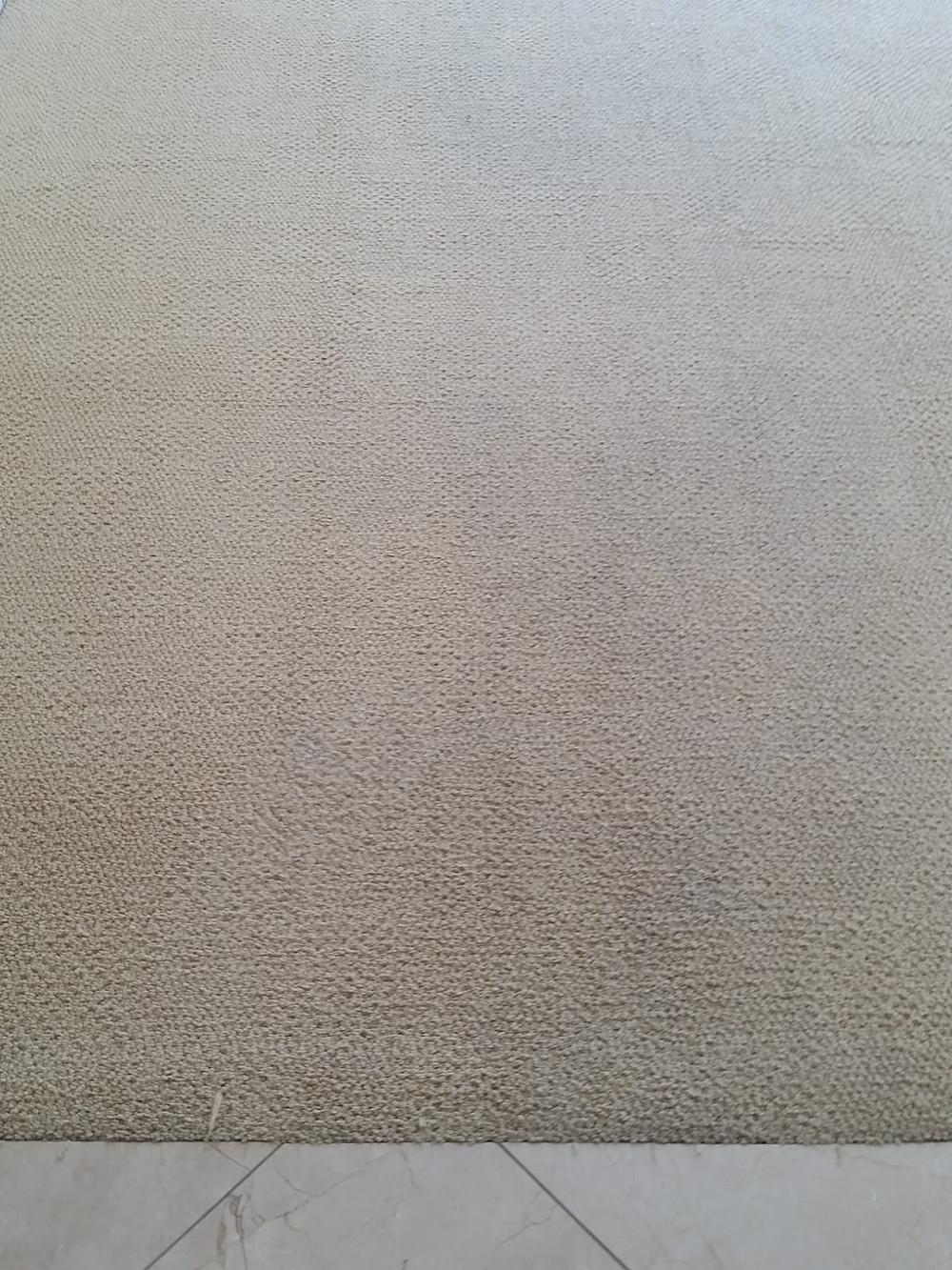 best carpet cleaning service in laguna hills