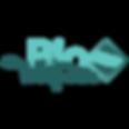 logo bioturquoise