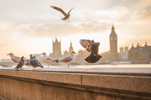 WEEKEND LIBRE À LONDRES