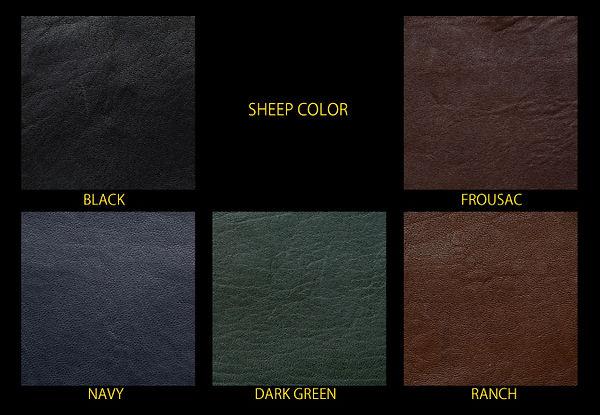 Sheepcol.jpg
