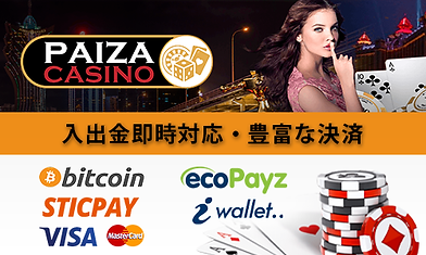 Paiza_banner-paymentc-500x300.png