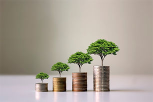 Showing financial developments and business growth with a growing tree on a coin..jpg