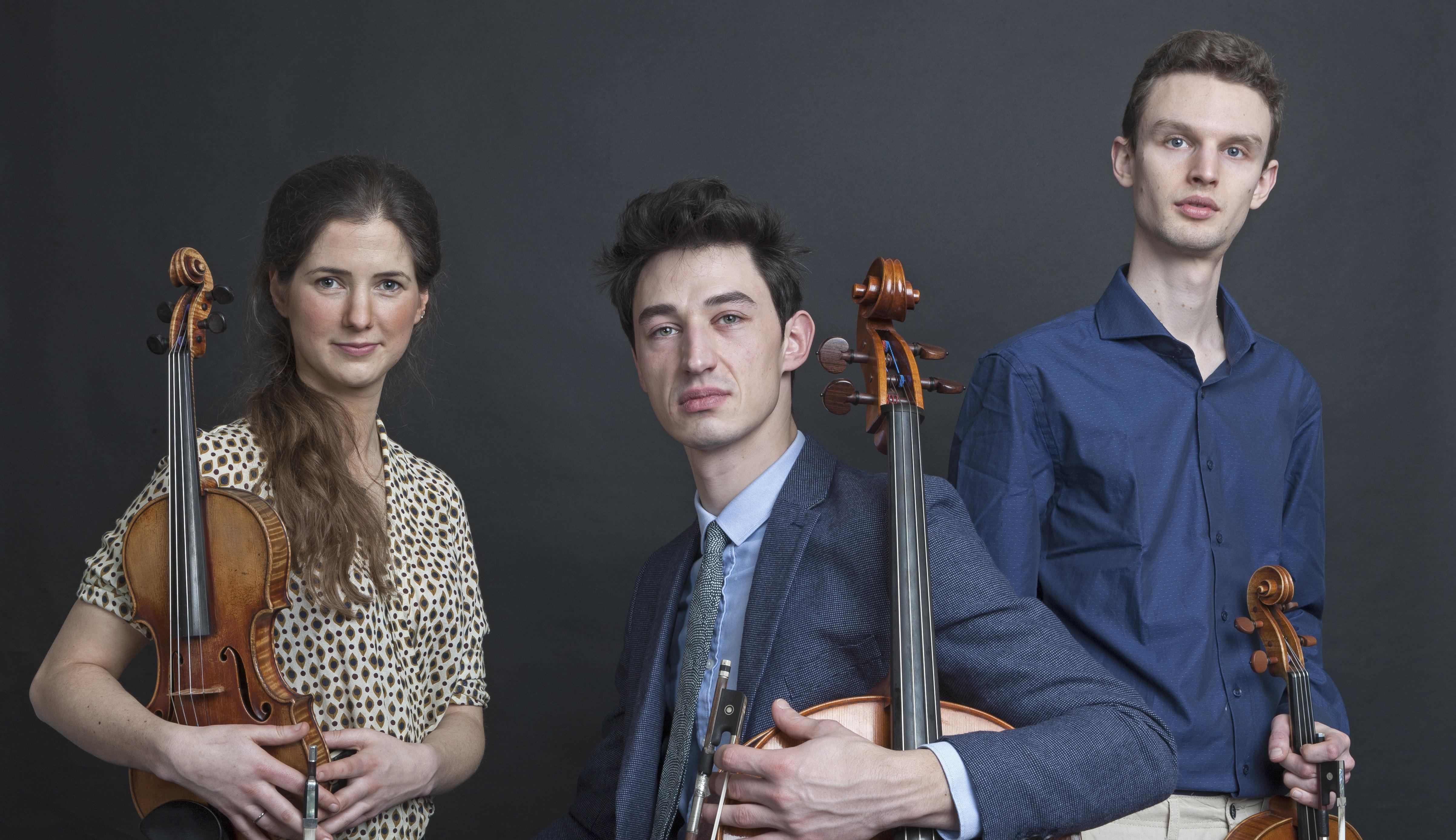 Amethys Trio 2
