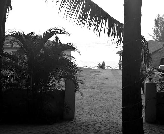 Palmestrand Indien