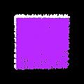 purple folk alliance logo.png