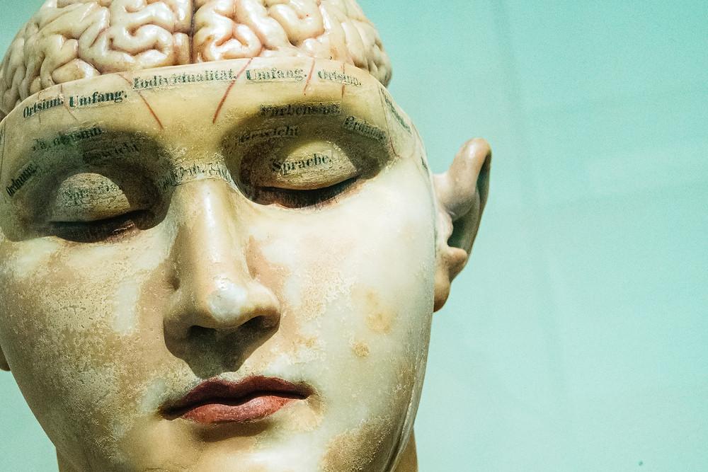 Gedächtnis, Gehirn, Kopf, geistige Fitness, Denken