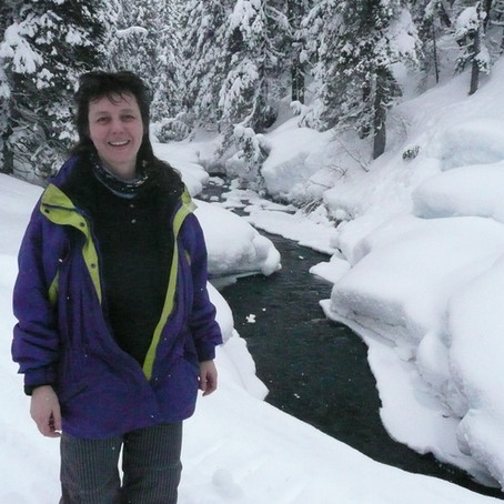 Alaska SeaLife Center Announces Alaska Ocean Leadership Award Recipients
