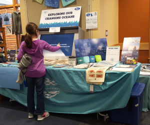 A child explores the OA kiosk at Whalefest in Sitka last November.