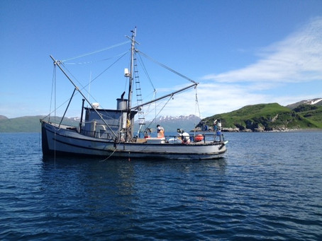 The Powerful Impacts of Climate Change on Fisheries
