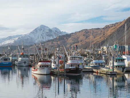 North Pacific Fishery Management Council Update – September 2019