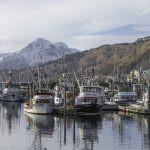 kodiak-harbor-boats-115-800x600