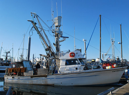 Modernizing Fisheries Management Should Benefit All Sectors