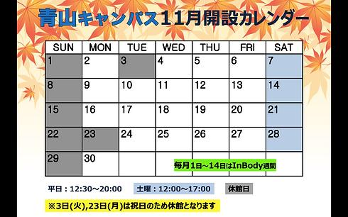 青山11月.png