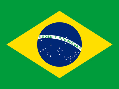 Defending Brazilian Democracy