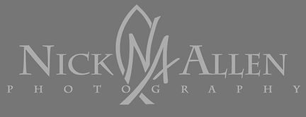 NAP logo 2013 Grey2.jpg