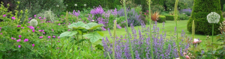 Landscaping Kitchener waterloo cambridge