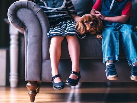 הקשר בין חלוקת הרכוש לגובה מזונות הילדים