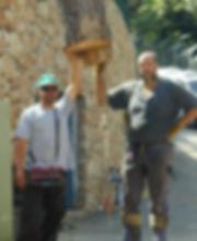 גיזום עצי דקל-גיא ברלב
