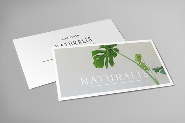 naturalis_card_web_small.jpg