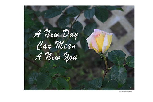 A New Day Can Mean A New You