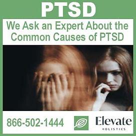 PTSD - Elevate_Banner.jpg