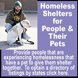 Homeless Shelters for People & Their Pet