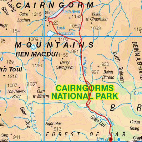 Two women, two dogs, and two nights in the Cairngorms