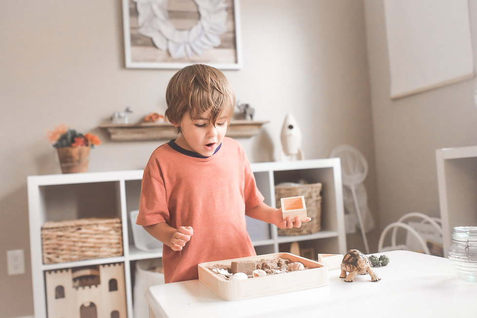 Child plays with natural toys
