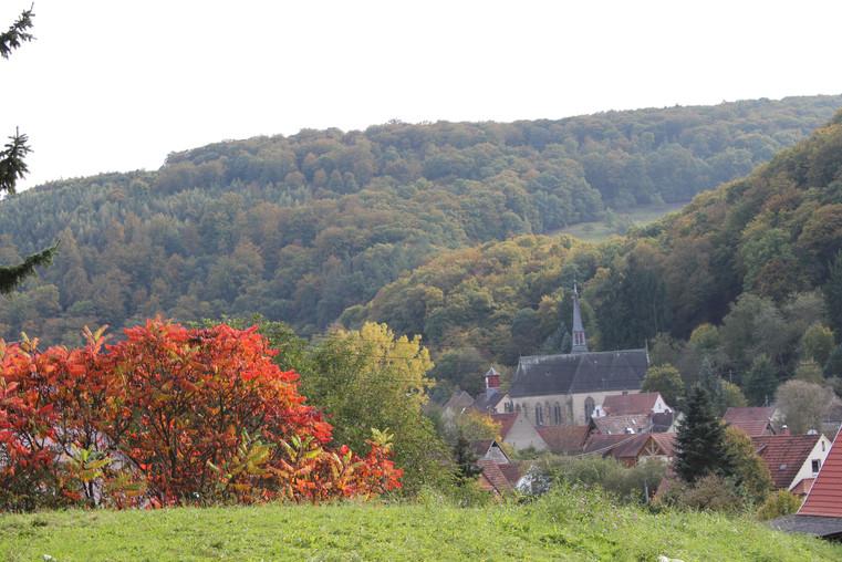 Blick von der Schule auf Imsweiler