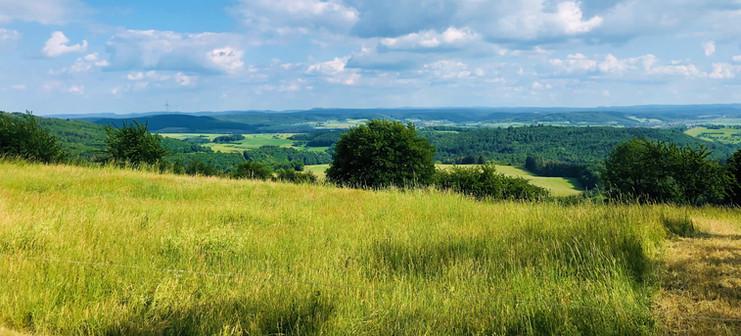 Blick vom Wintersberg nach Süden Richtung Pfälzer Wald