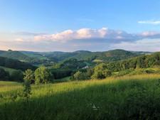 """Blick von der Gemarkung """"Mayen"""" Richtung Osten"""