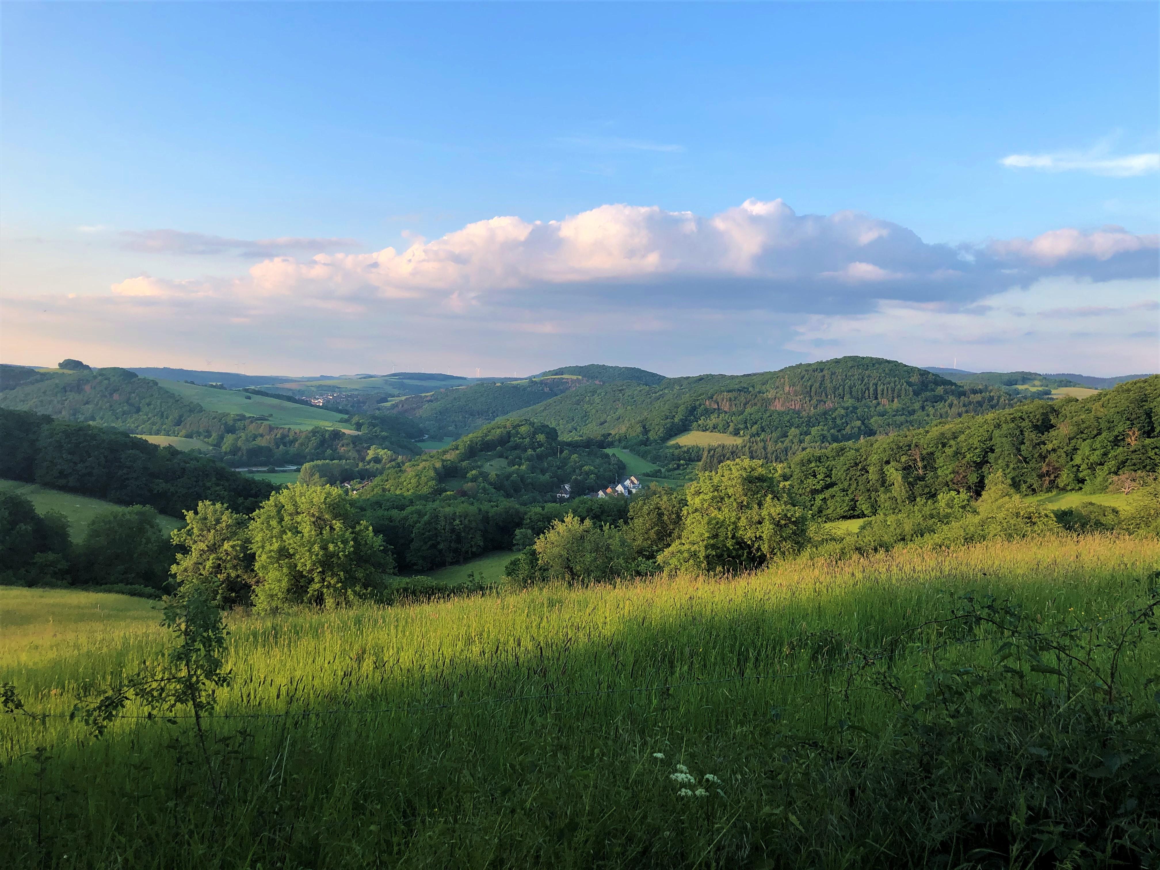 Natur_Imsweiler_06