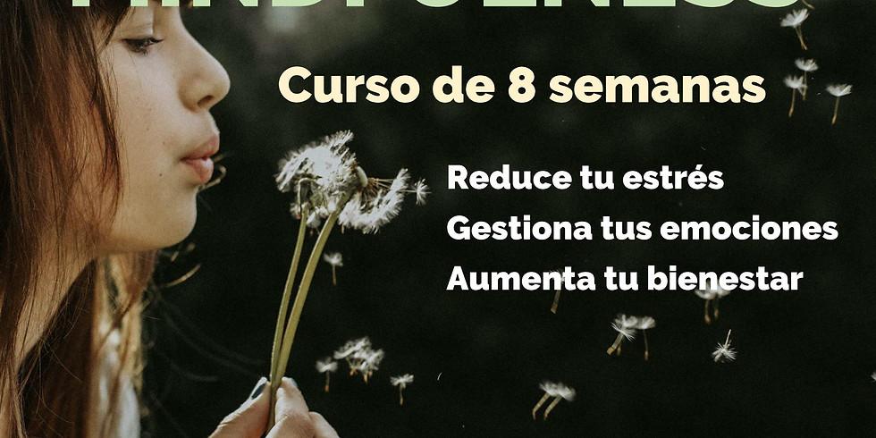 CURSO DE MINDFULNESS -8 SEMANAS-