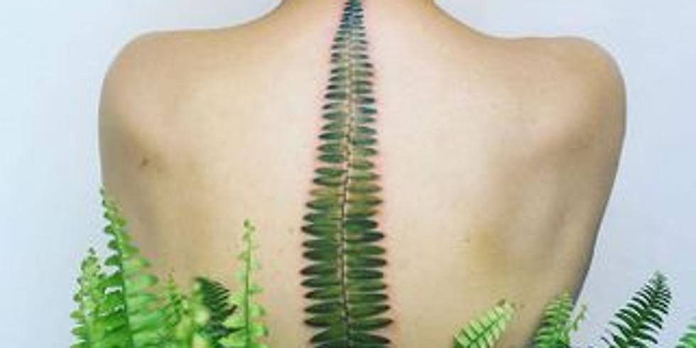 Yoga Terapéutico: conoce tu columna vertebral. Por Amaia López.