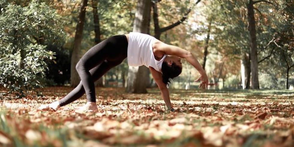Vinyasa Yoga: (des)Orden Armónico, por Itziar Donezar