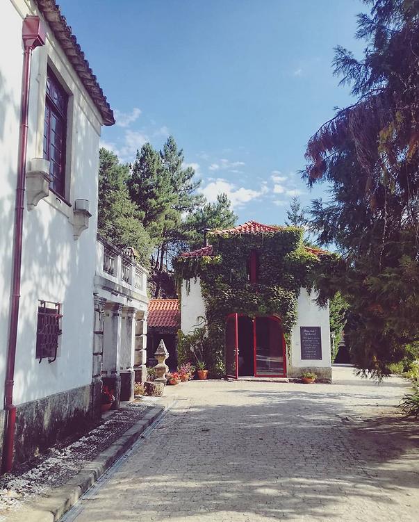 Casa Agricola da Levada Eco Village