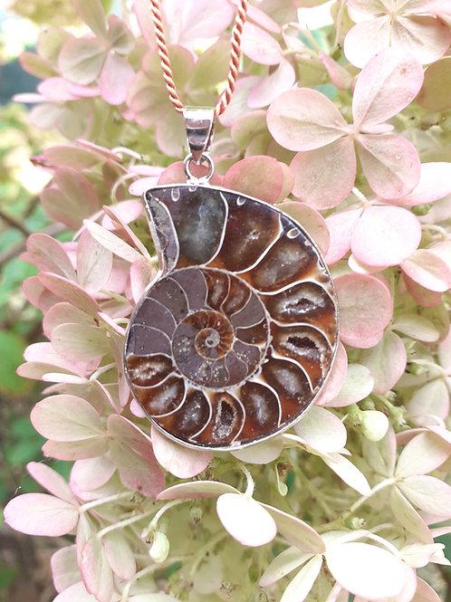 Collier Ammonite extra
