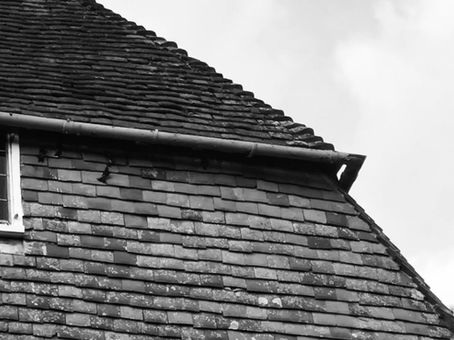 Return of the House Martins