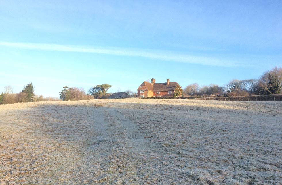 Scrag Oak in mid winter