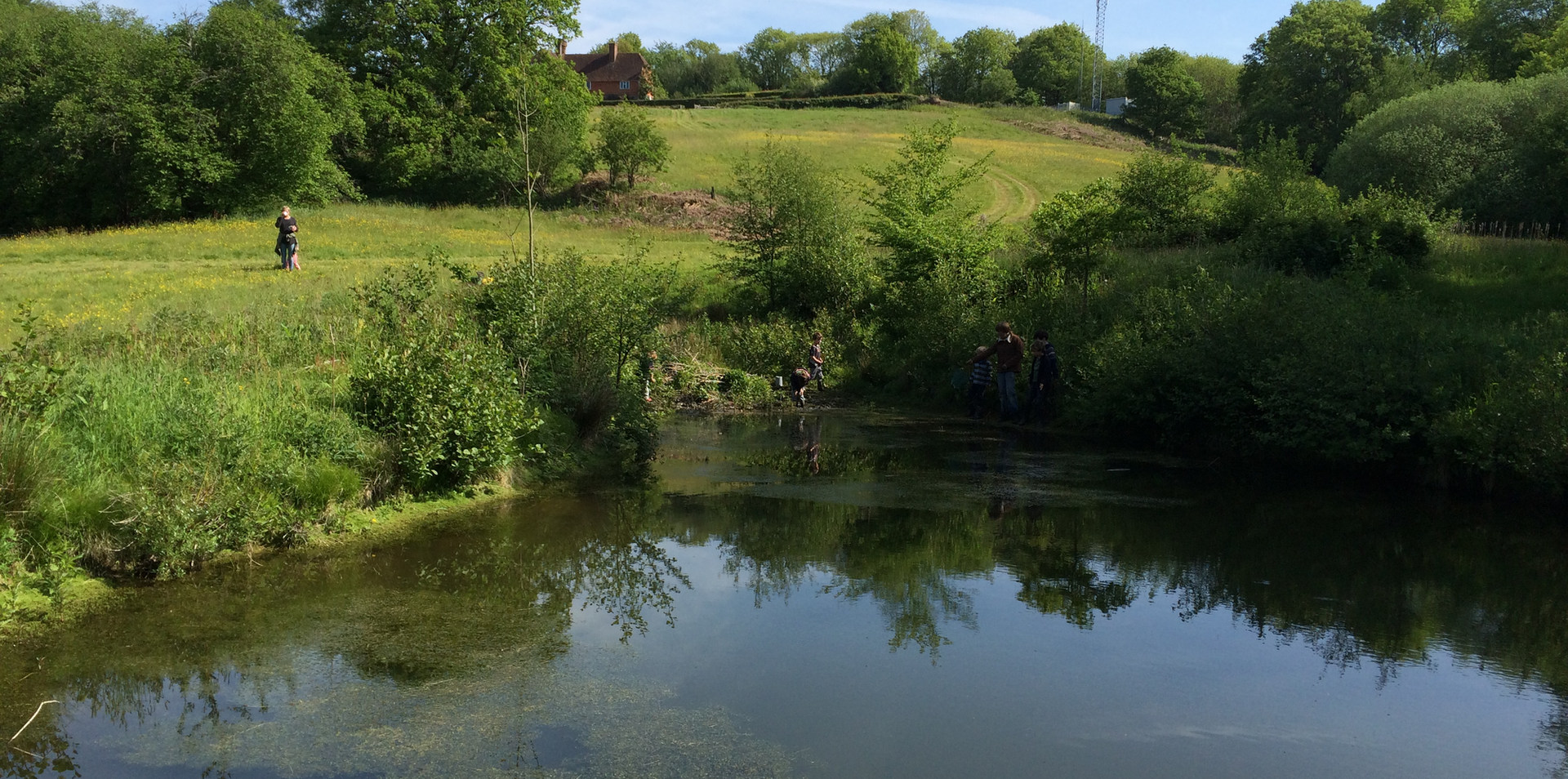 Scrag Oak pond
