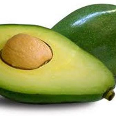 AGUACATE CRIOLLA