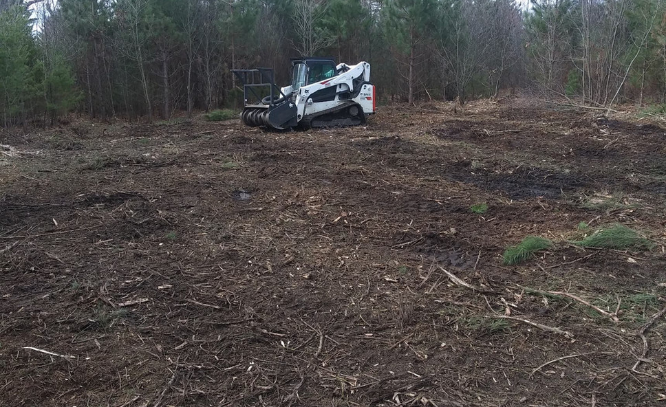 Clearing for a new Deer Food Plot