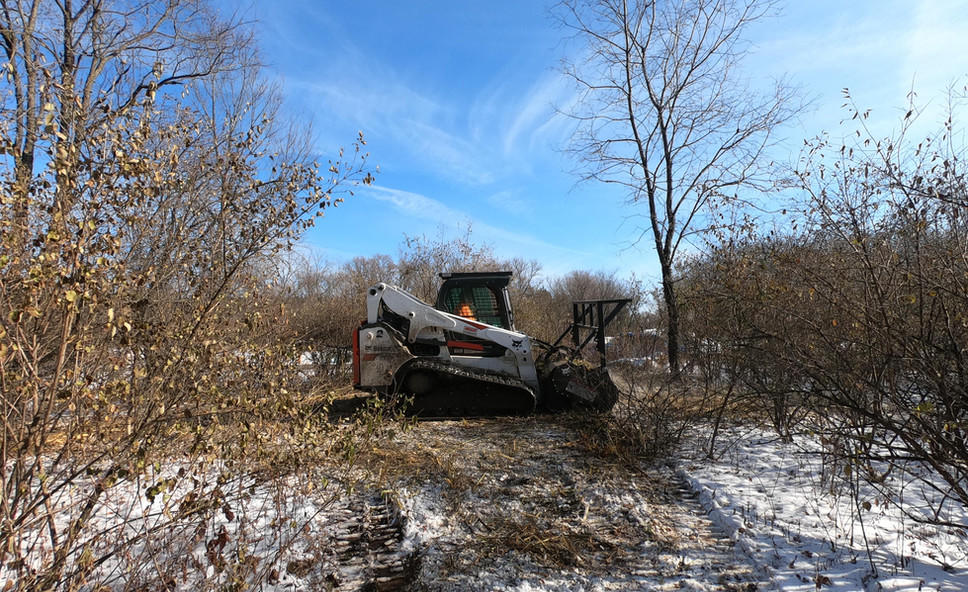 Clearing Out Field