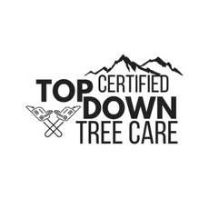 Top Down Tree Care