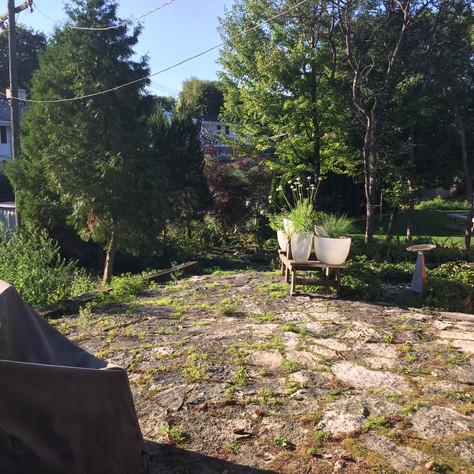 Bluestone Landscape CS Before 7.JPG
