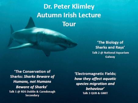 Dr. Hammerhead Lecture Tour