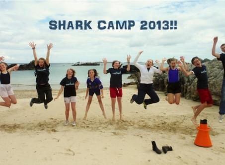 Shark Camp Update