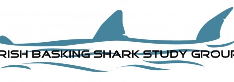 Legal Protection for Basking Sharks in Irish Coastal Waters