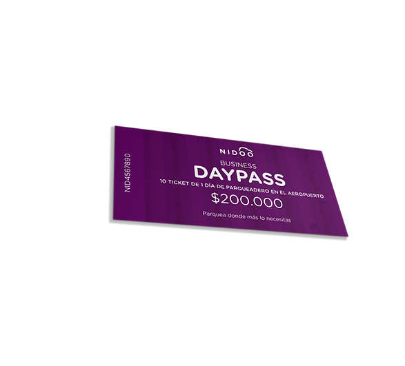 day pass business.png